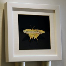 vintage map butterfly frame